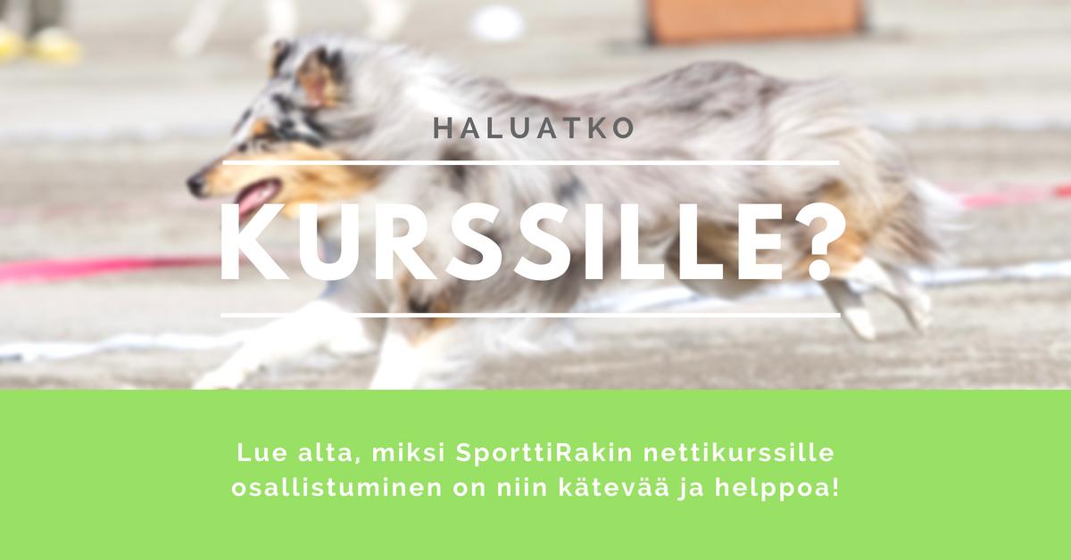 SporttiRakin nettikurssit - nettikurssi koiran kouluttamiseen ja eri lajien harrastamiseen. Verkkokurssit kaikentasoisille harrastajille aloittelijoista kisakentillä menestyneille kokeneille ohjaajille!