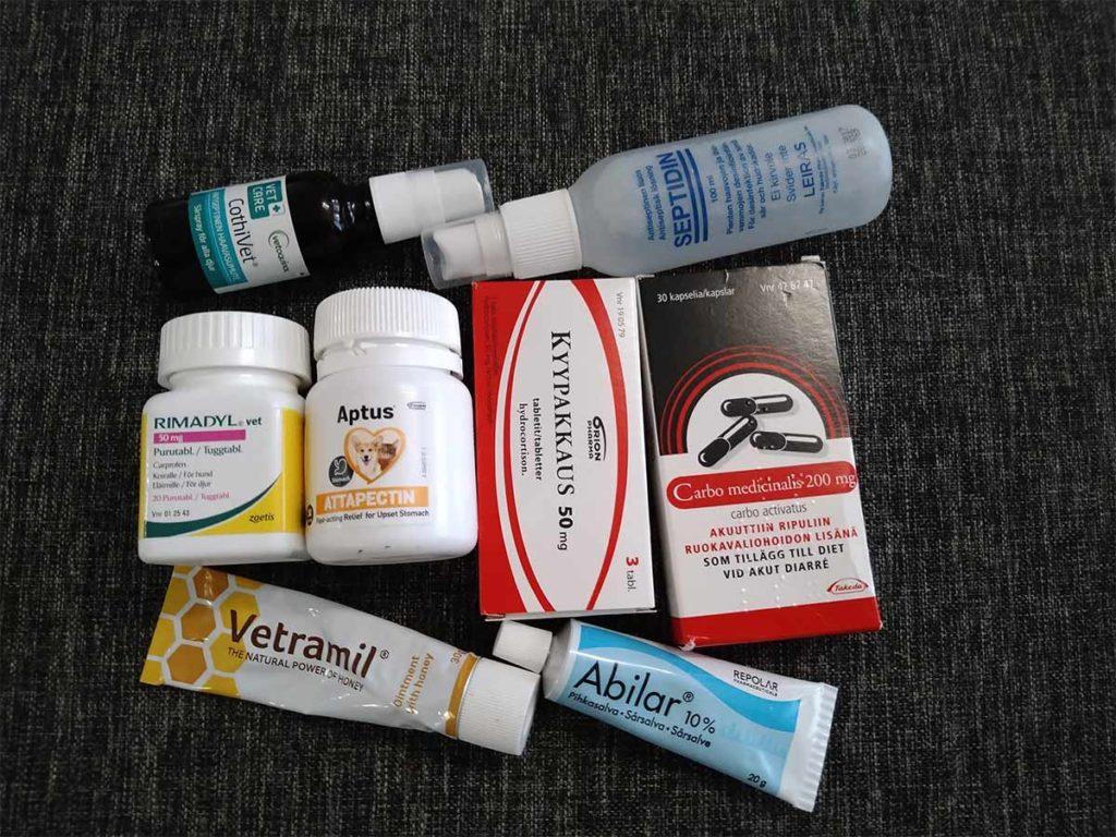 Koirien ensiapulaukku: lääkkeet, kipulääkkeet ja kyypakkaukset